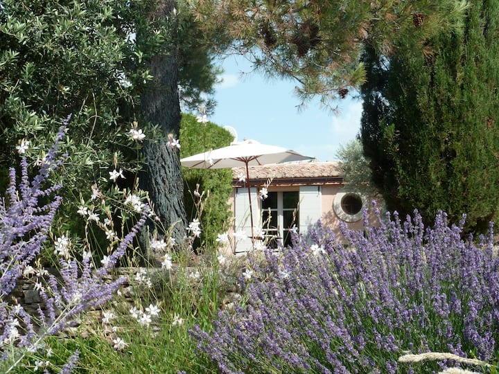 In Gordes : Pink House for 2 Adults