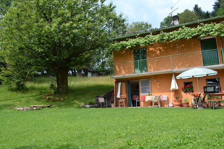home in the nature - Ramponio Verna - Penzion (B&B)