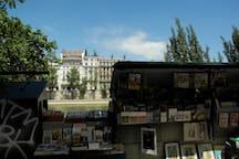 Going down rue de Poissy, la Seine