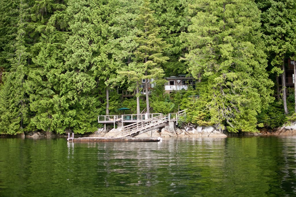The cottage nestled in the lush BC forest.