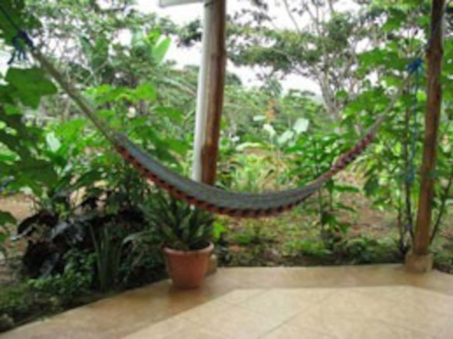 one of the hammocks