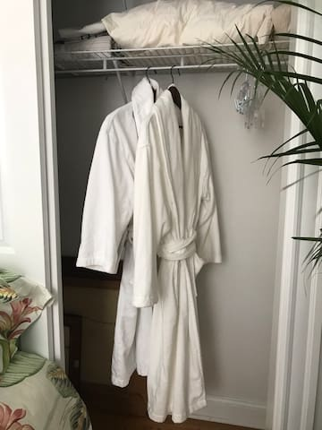 Full size closet with two robes