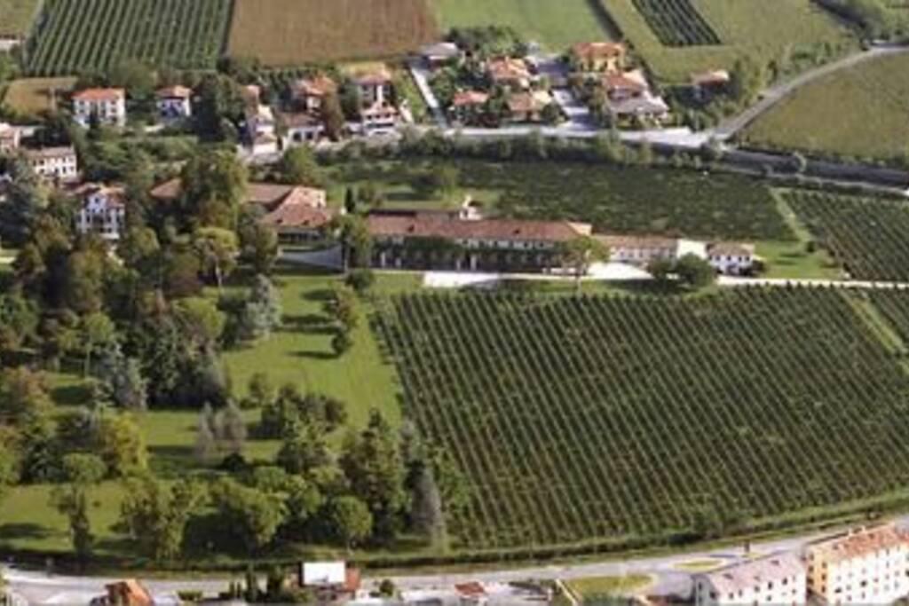Veduta aerea della tenuta, cantina, parco e vigneto