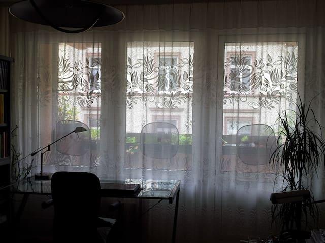 Nice Room - near Fair/Central Station/Main River
