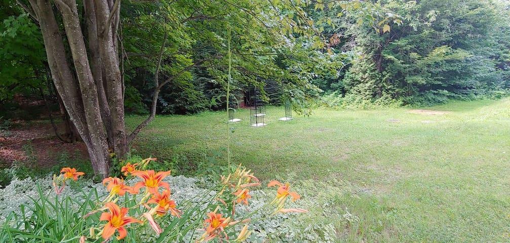 Camping zen en nature
