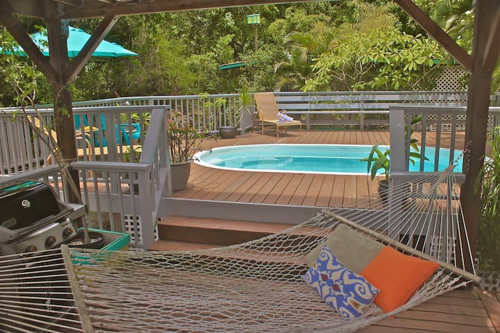 St John Garden Rental with a Pool, WIFI and AC