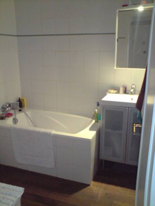 The bathroom (WC has its own door). Washing machine off-camera.