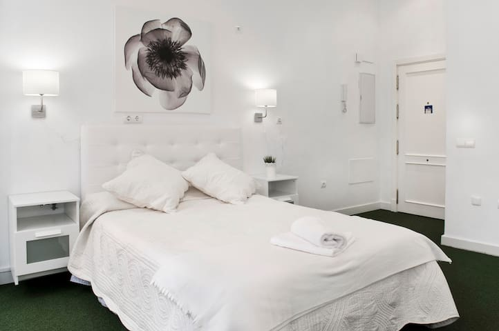 Luxury Suite in Old Town Malaga