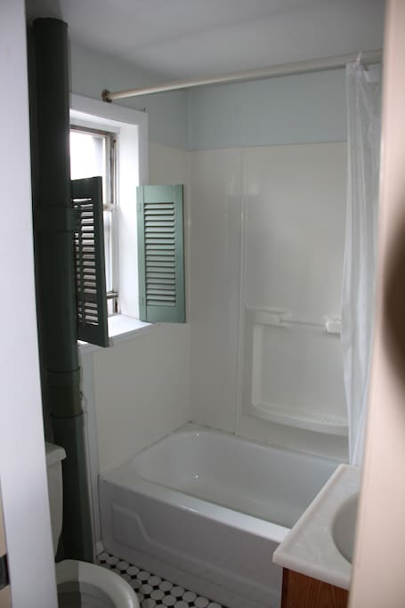Bathroom with tub, shower, and plenty of hot water