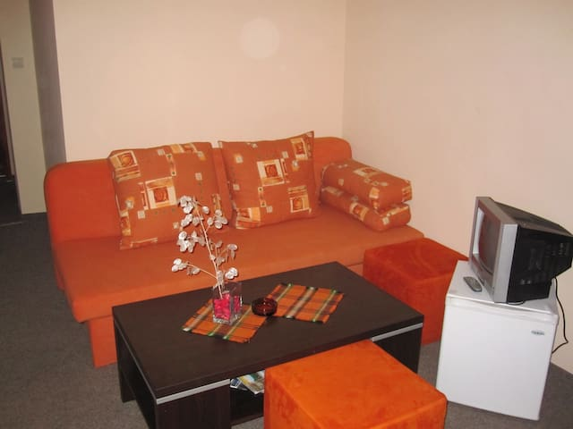House for rest in the real center - Bansko Municipality - House