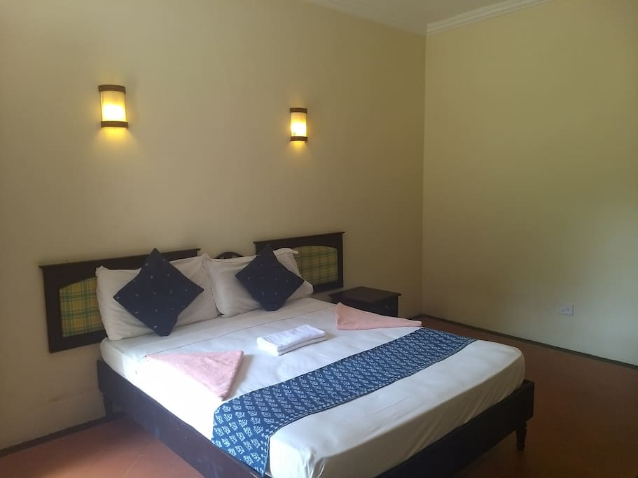 Non Ac Room with Double Bed