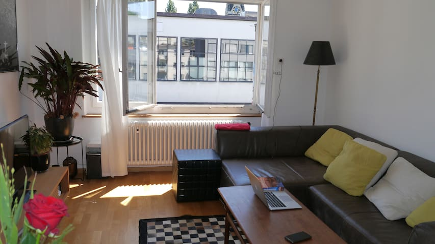 Cozy, centrl 1 BR, 1 living R, top floor, terrace - Zürich - Wohnung