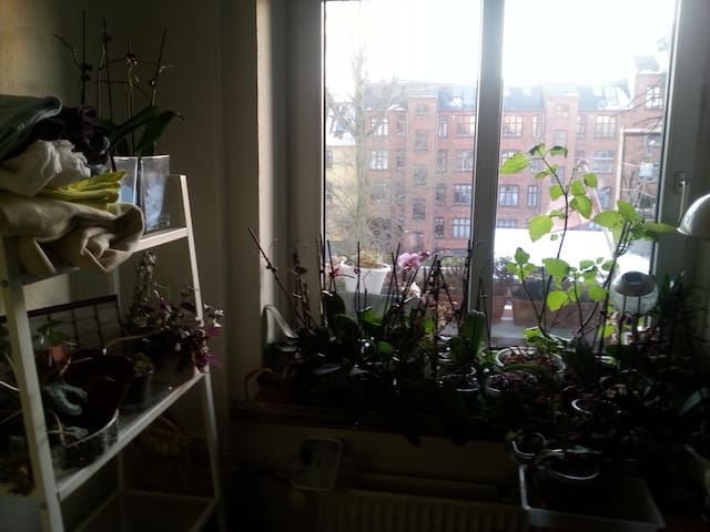 Single room in shared apartment with spare matress - Kopenhaga - Apartament
