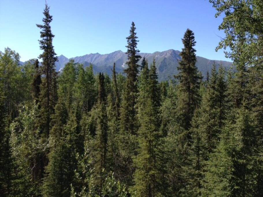 View from the hexagoda of Fireweed Mountain.