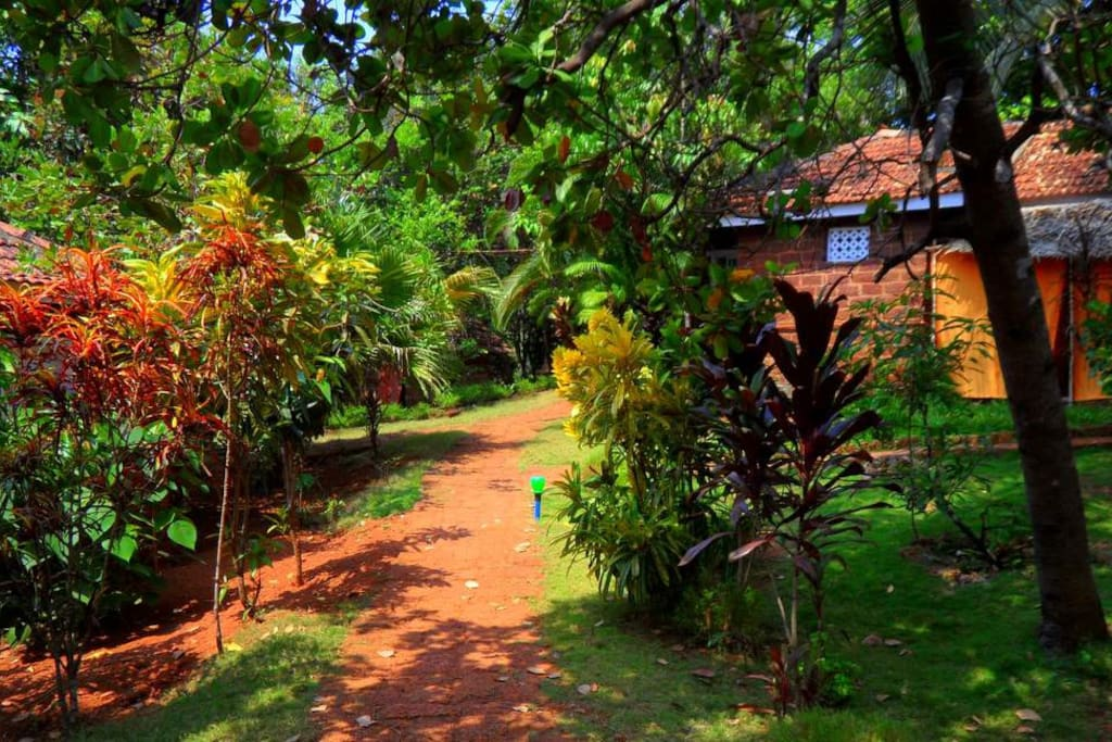 Path to cottages around the property