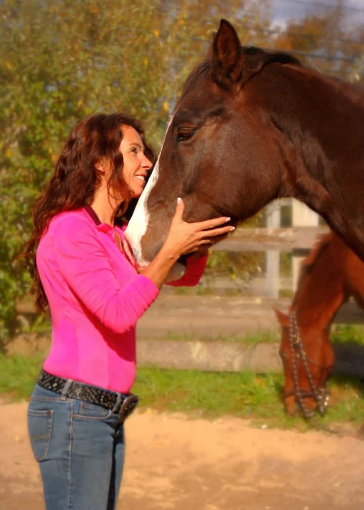 horses touch human hearts