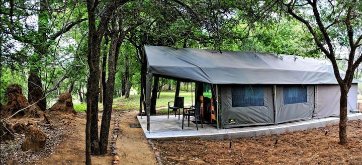 Selati Tented Camp