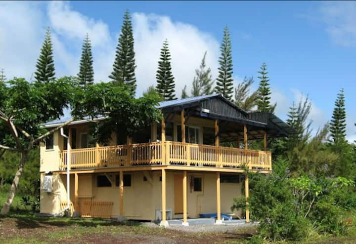 The Mango House near Pahoa