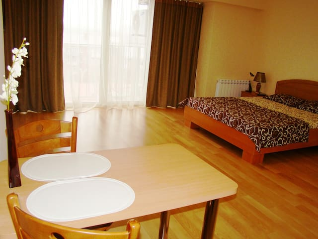 Apartament Lux Centre Wi-Fi Free - Dnepropetrovsk - Apartment