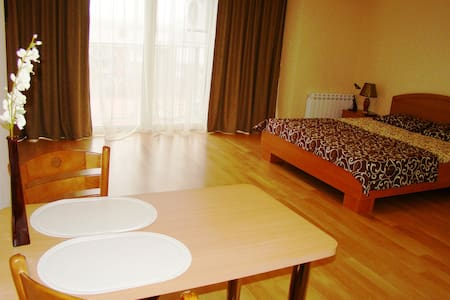 Apartament Lux Centre Wi-Fi Free - Dnepropetrovsk - Appartement