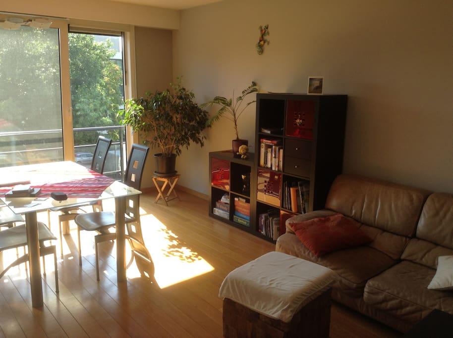 Spacious, luminous and cosy livingroom