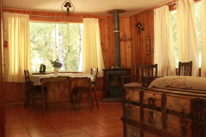 Entre Villarrica y Lican Ray: Río y Naturaleza.