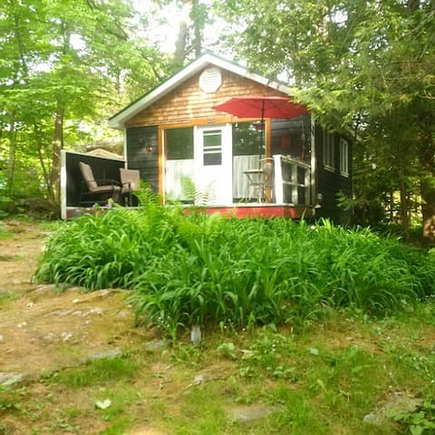 Bunkie in Beautiful Bala, Muskoka