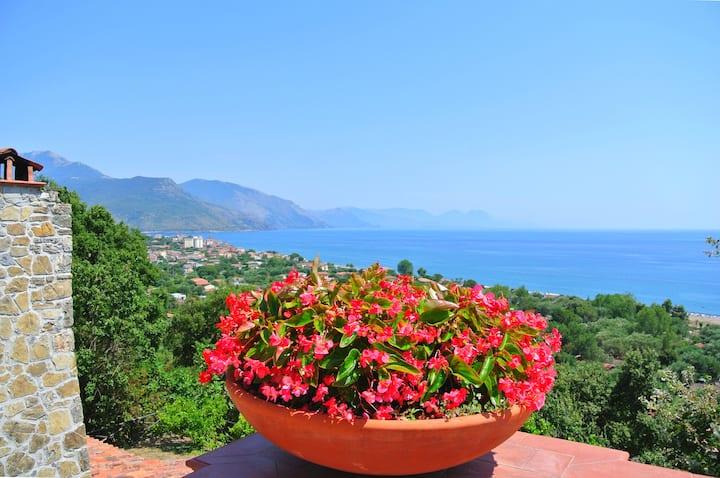 Appartamento in villa con piscina  Cilento Coast