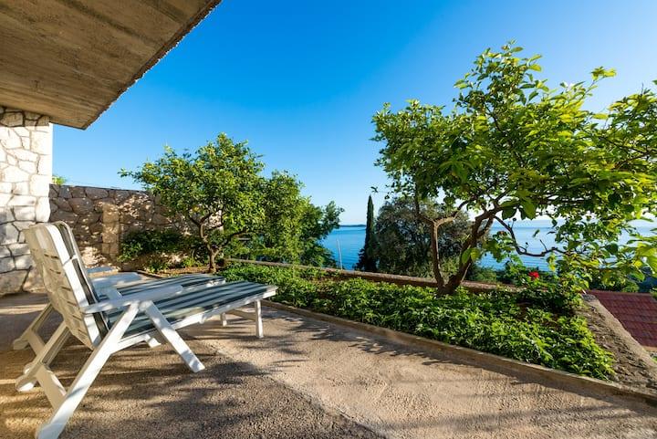 Charming apartment near Dubrovnik