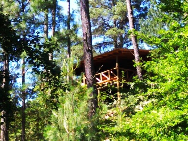 Cabaña Shinkal , bosque,  arroyo, río, viñedos