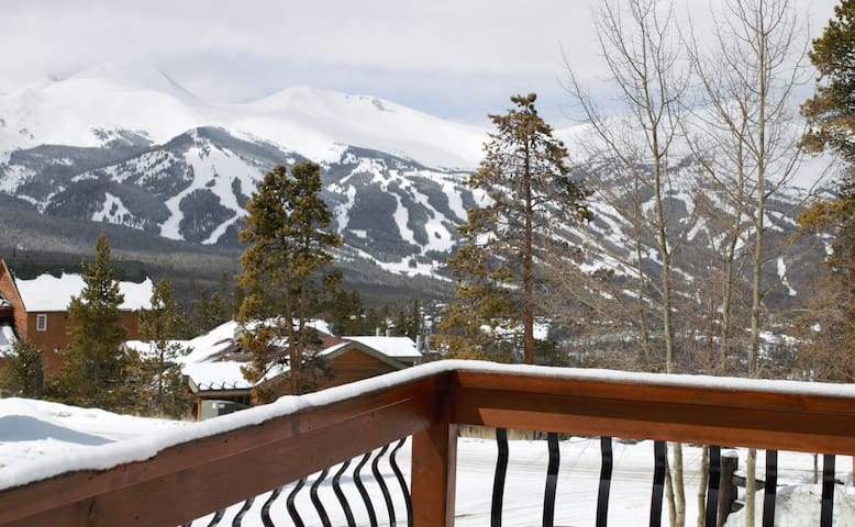 Mountain Views! Private room on bus route - Breckenridge - Townhouse