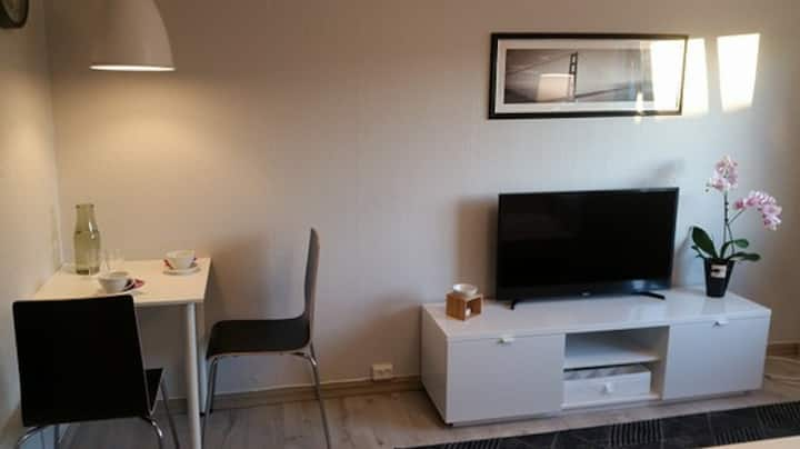 Apartment in the center of LILLEHAMMER