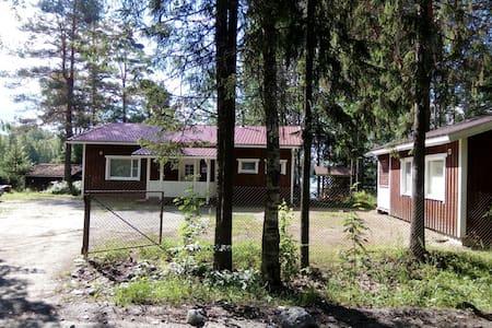 House on the lake Janisjarvi: Большой дом