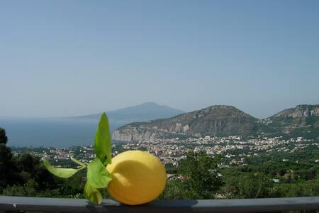 Agribio farm-house on Amalfi cost   - Sant'Agnello - Квартира