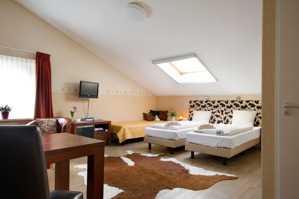 Room 2, Flatscreen TV/DVDE, airco in the summer, individual central heating in wintertime.