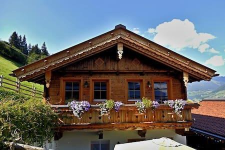 Holiday house Hochzillertal in  Zillertal