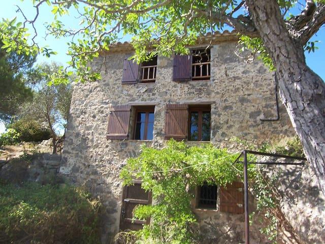 Le Refuge des Garrigues - Fraissé-des-Corbières - House