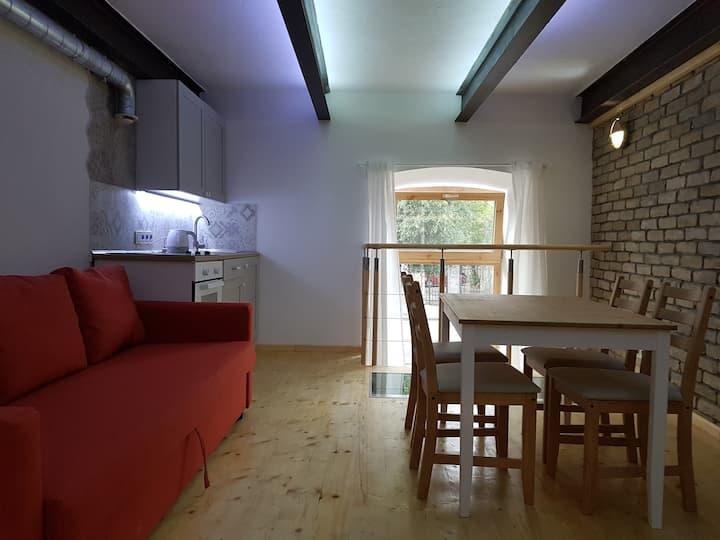 Jasinskio house