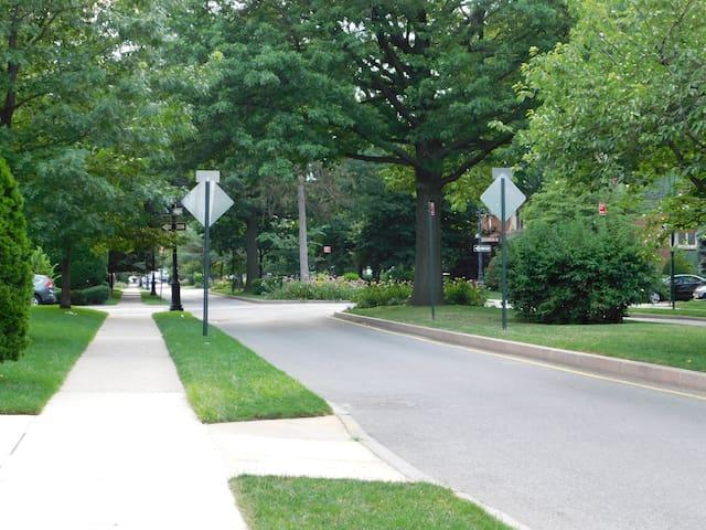 Neighborhood where you are staying
