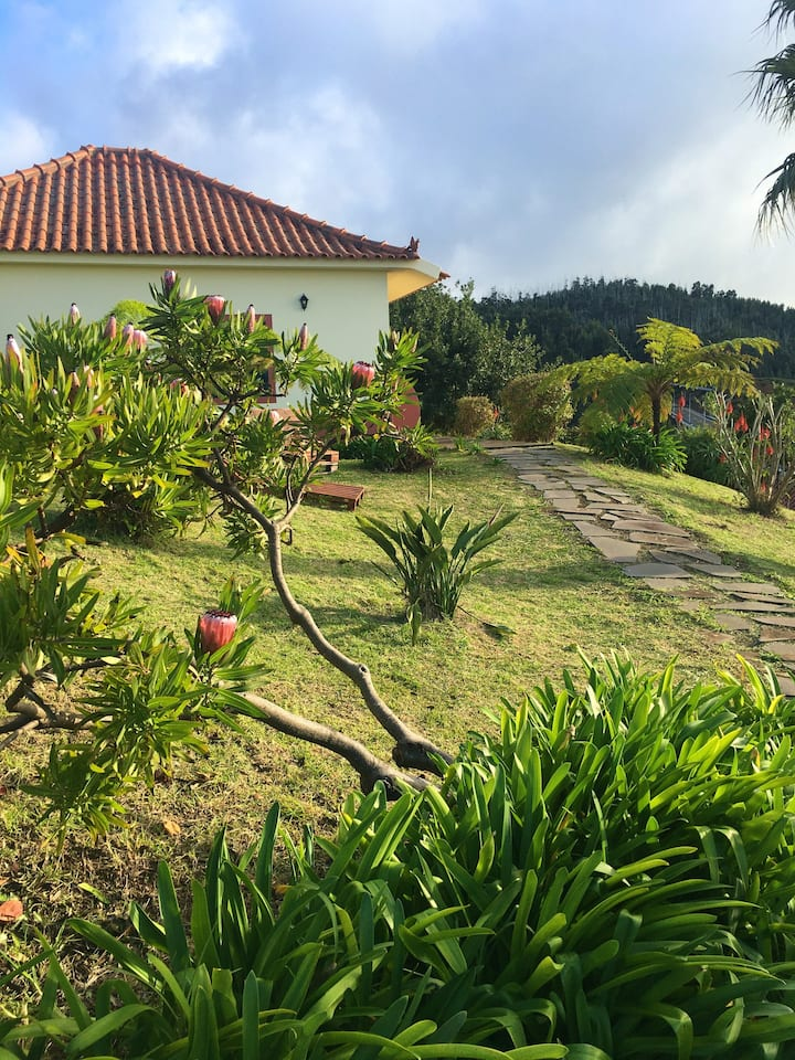 House with one bedroom in Madère, with wonderful sea view, furnished garden and WiFi - 20 km from the beach