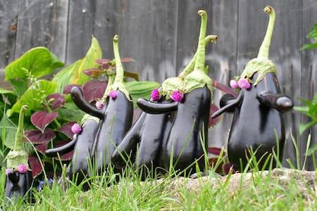 Organic farm stay near Pittsburgh #3