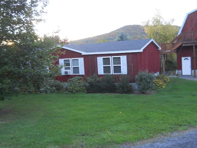 The Cottage at Valley Brook - Cooperstown - Hus