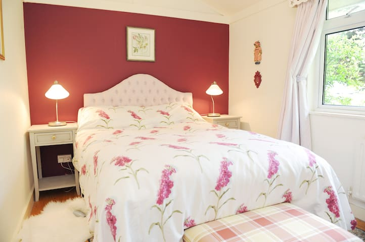 Homely B&B in Irish countryside - Dunshaughlin - Bed & Breakfast