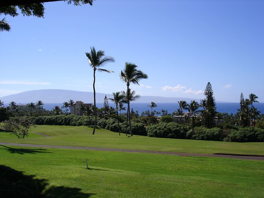 Daytime view from the lanai toward the south