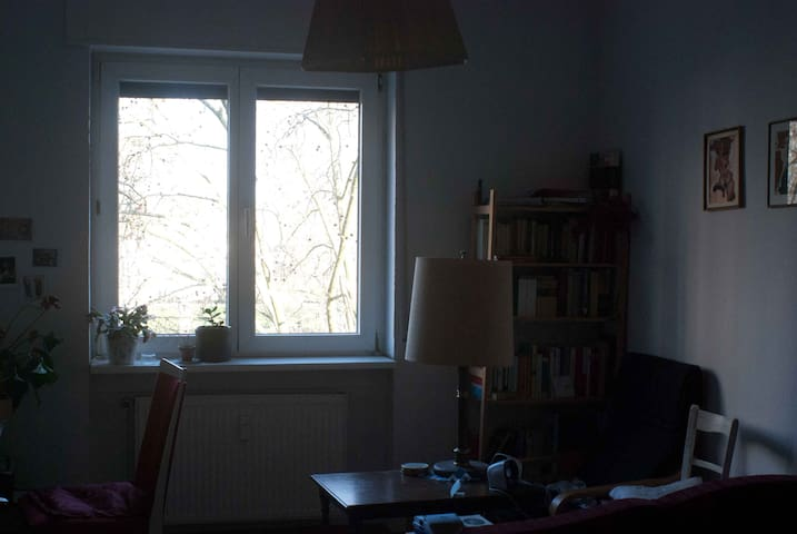 Big room in the center of town - Offenbach am Main - Wohnung