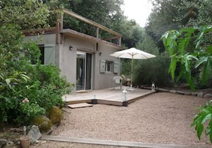 modern studio in a quiet old fore - Figari