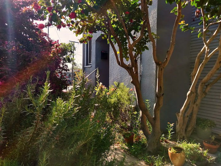 lovely studio nearby North Berkeley Bart Station