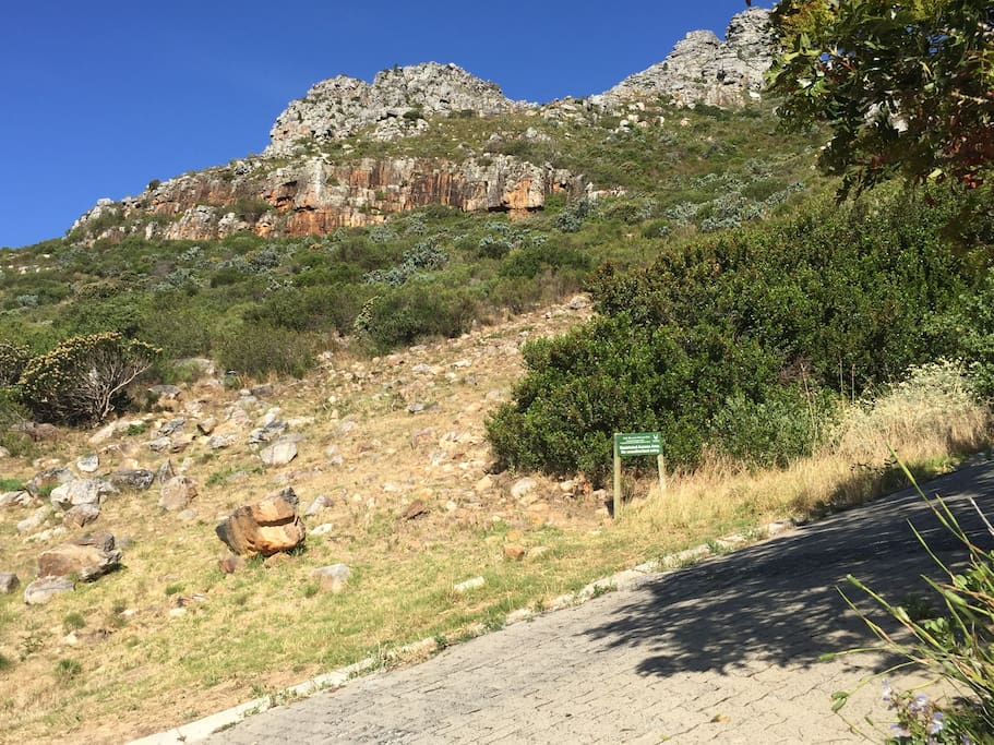 Table Mountain Nature Reserve, on our doorstep