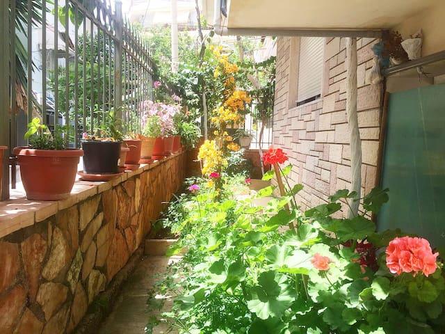 Flowers' Room 2 - Sarandë - Haus