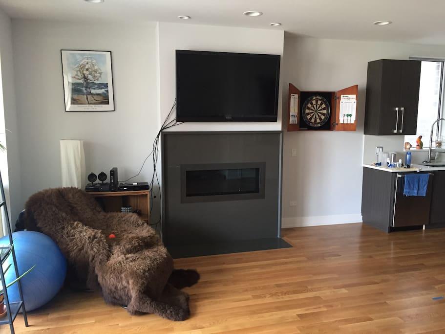 "Living room - 55"" HDTV, electric fireplace, & dart board"